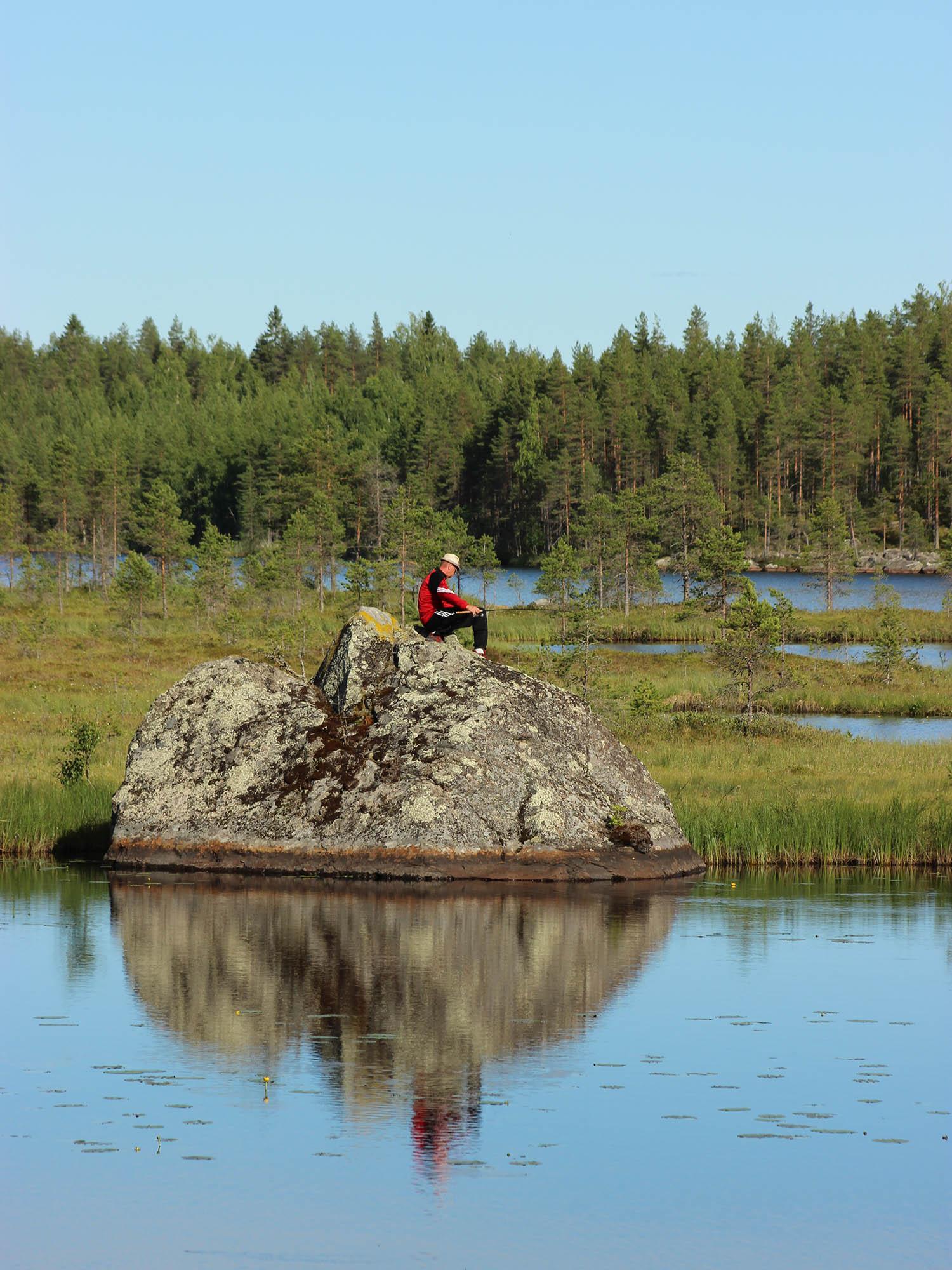 visitlestijarvi.fi has been published!