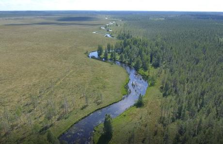 River Lestijoki.