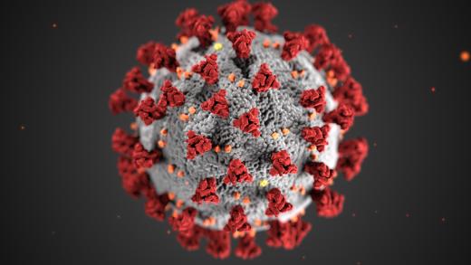 Coronavirus 3D illustration by CDC